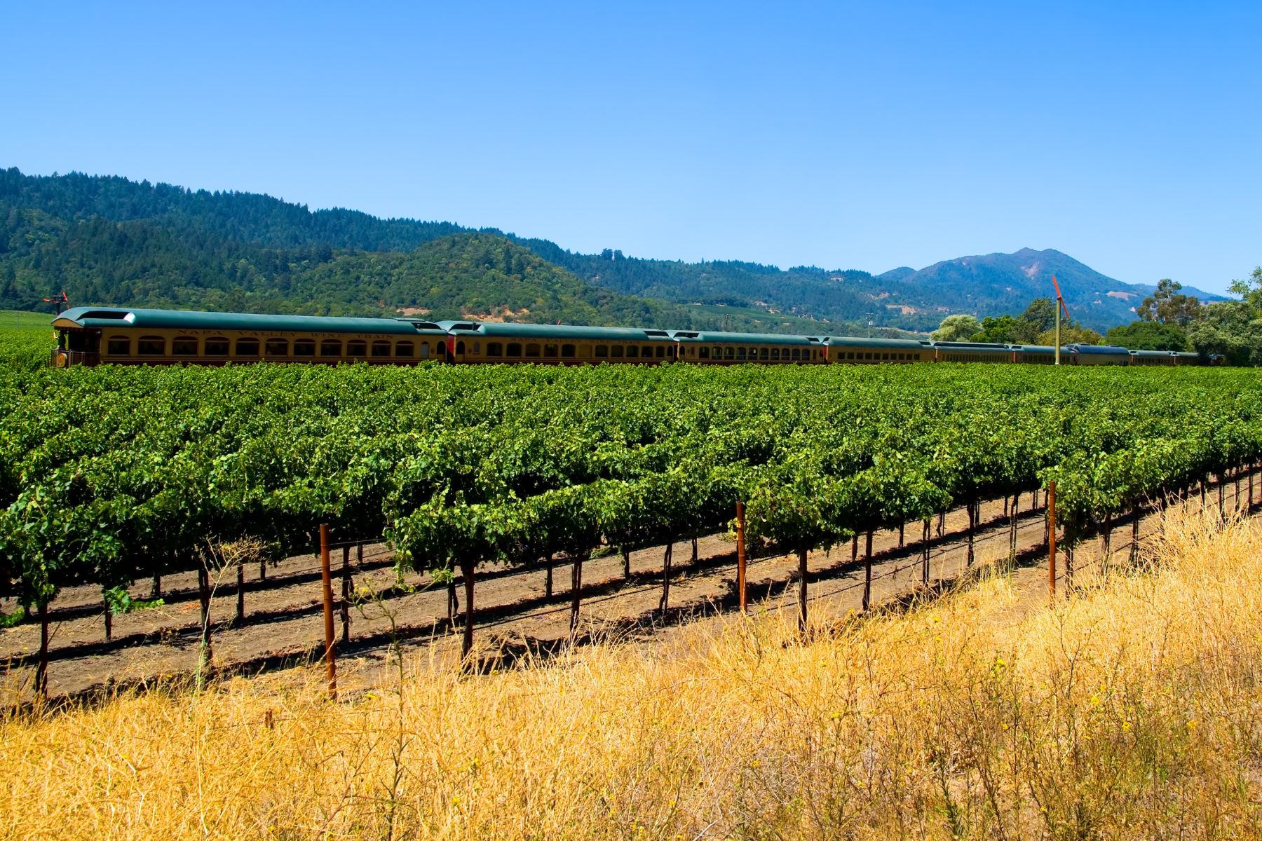 Napa Valley Wine Train cruising through lush vineyards