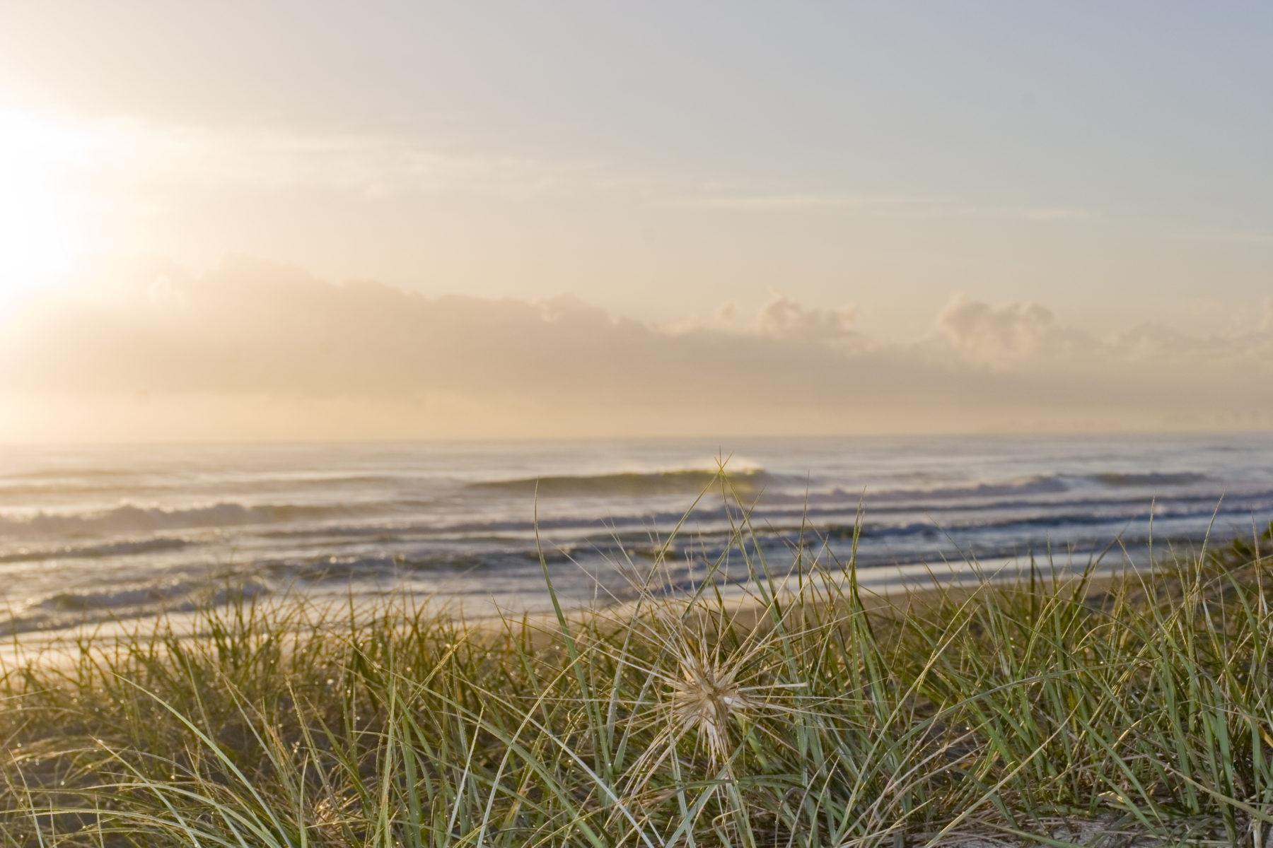 To Do List Marco Island Florida Marriott Vacation Club