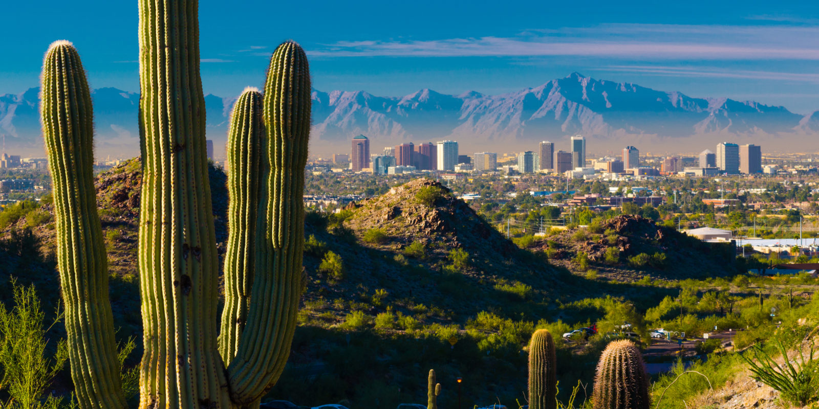 A Guide to Must-See Architecture in Phoenix, Arizona