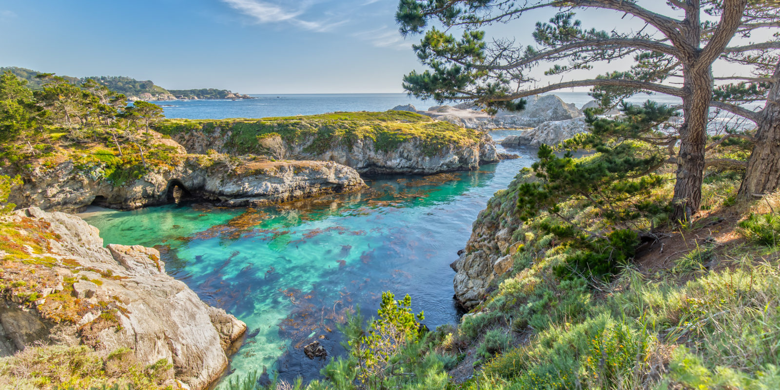 Day Trip from San Francisco: Visiting Point Lobos State Reserve