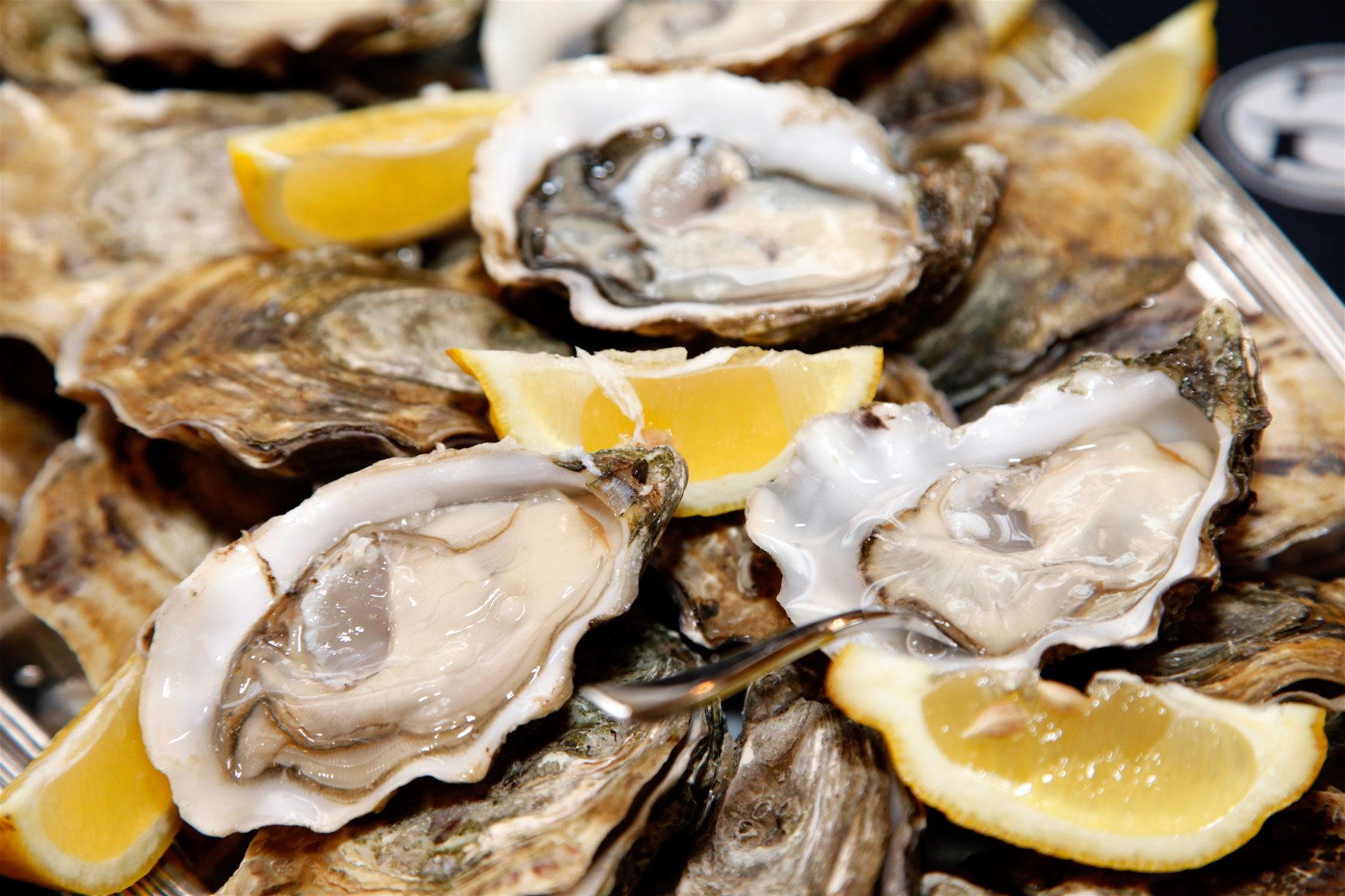 Hilton Head seafood - oysters