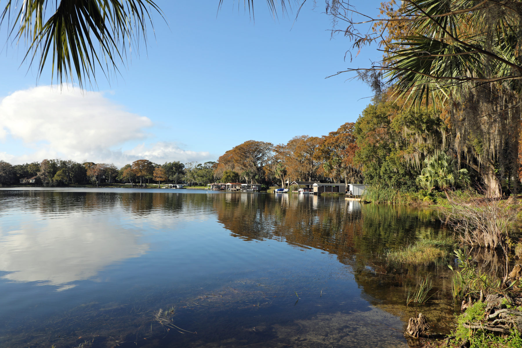Lake in Winter Park Florida