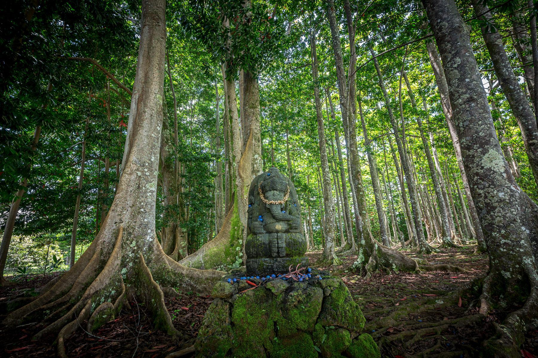Kauai Monastery