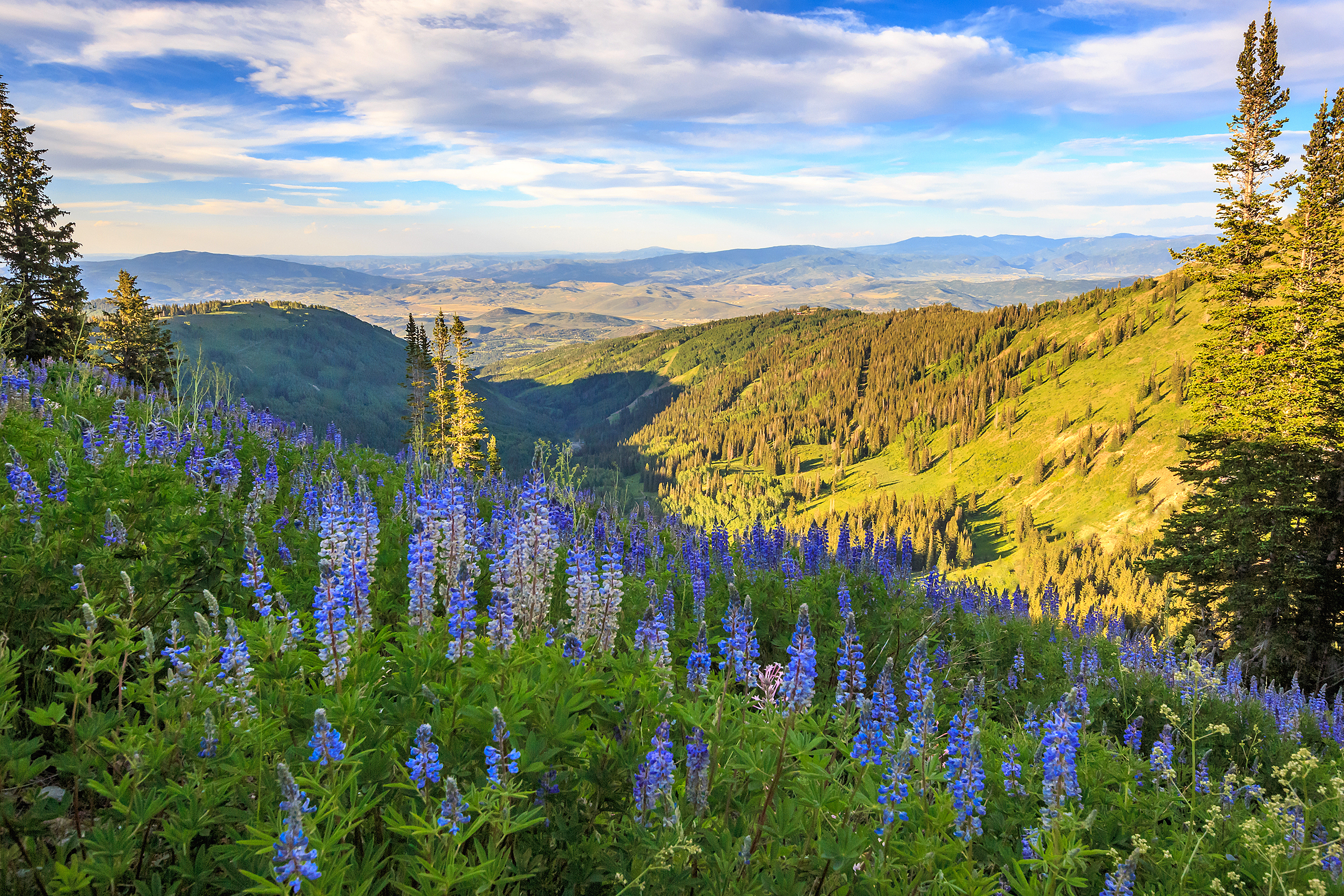 A Mountain of Options: Summer Activities in Park City