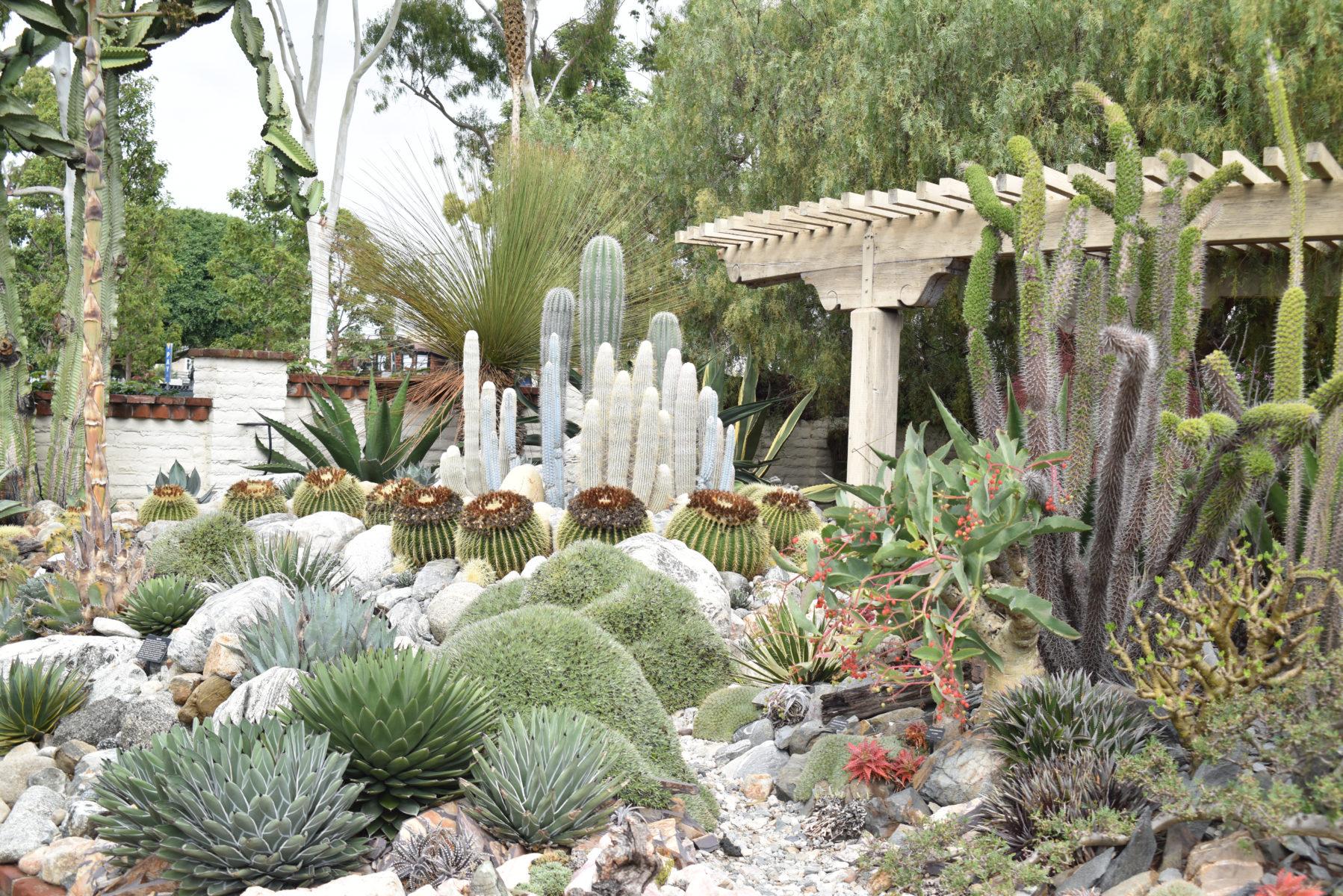 Insta Tour of Newport Beach, California