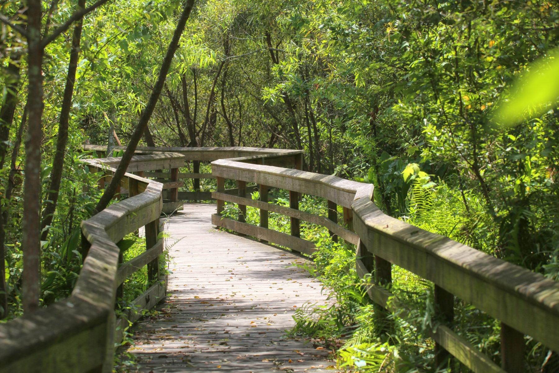 Orlando's Botanical Gardens