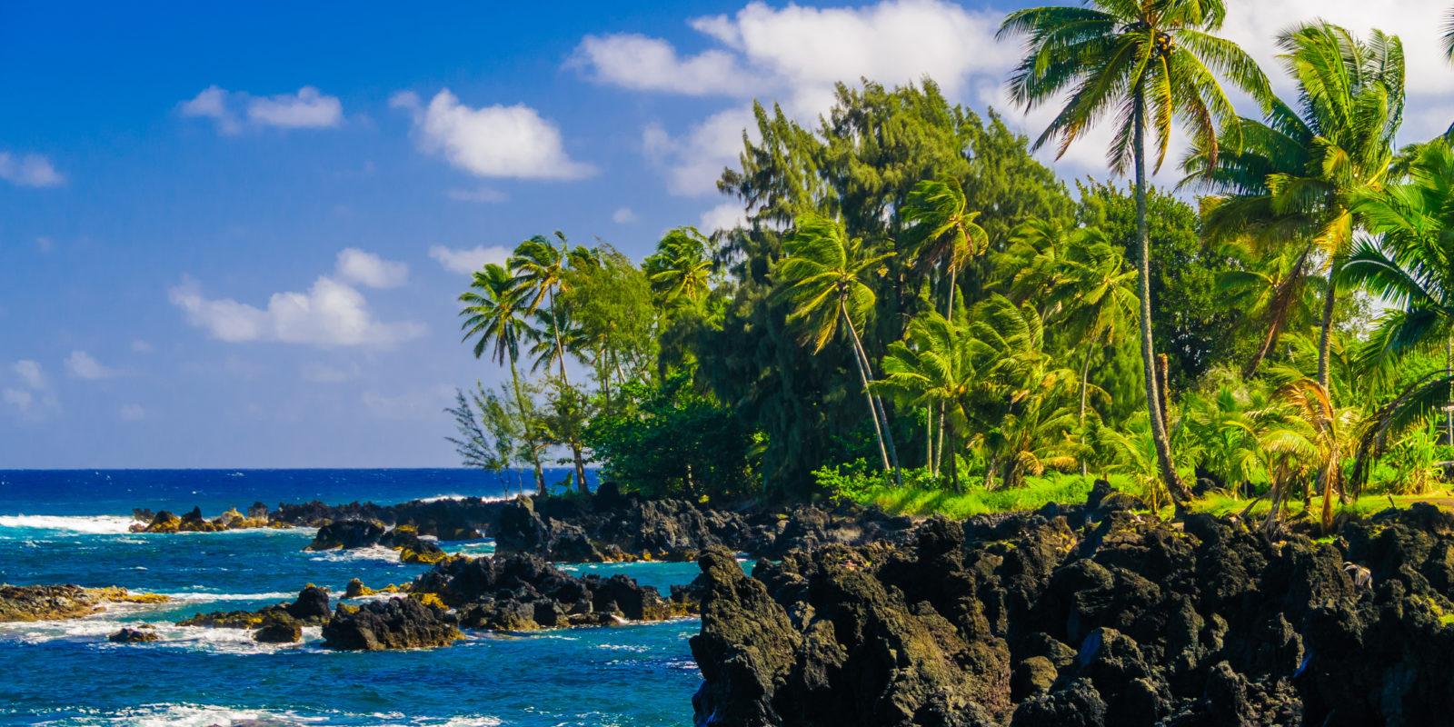 Unique Maui: an Island Like No Other