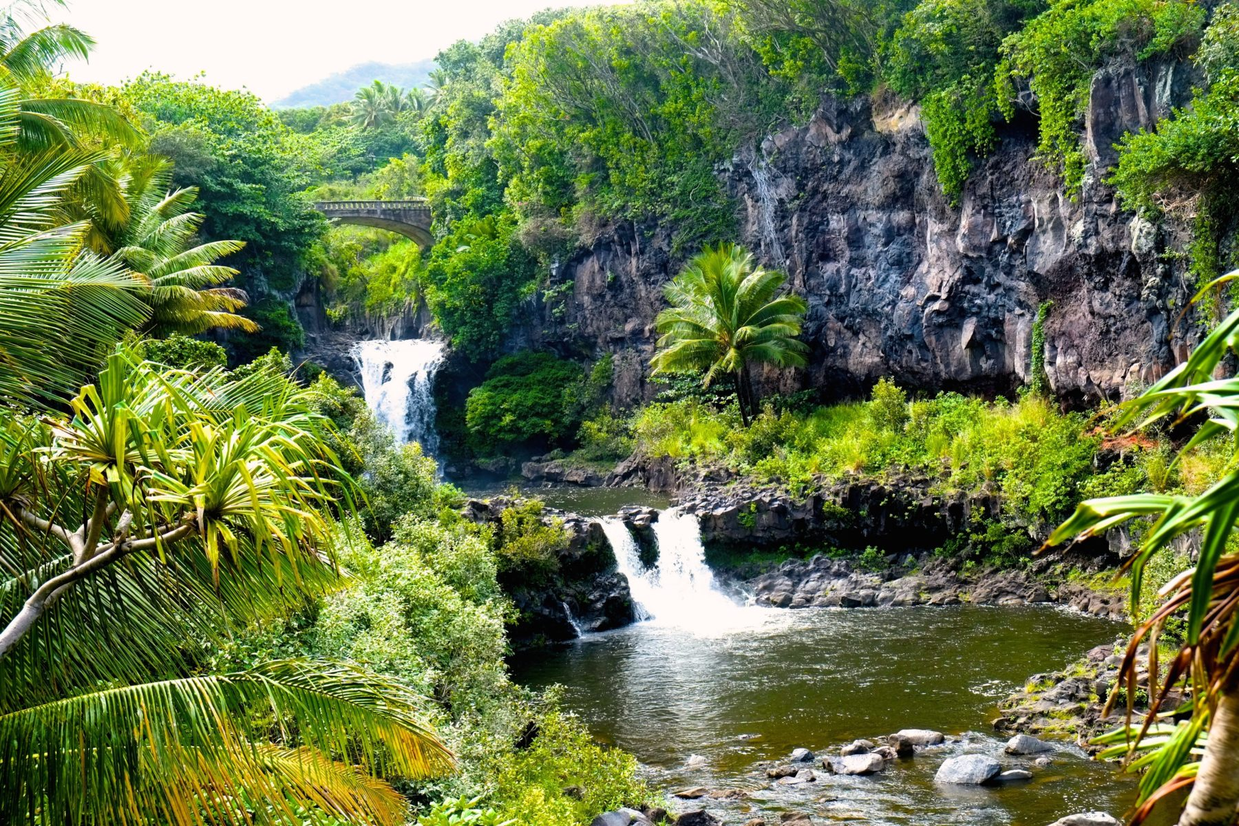 Unique Maui: an Island Like No Other