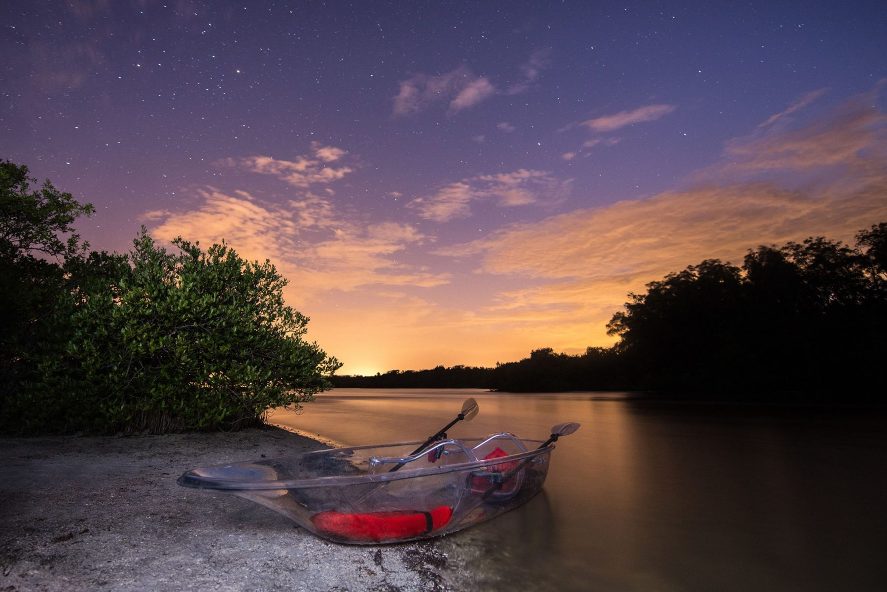 Bioluminescent kayaking at night