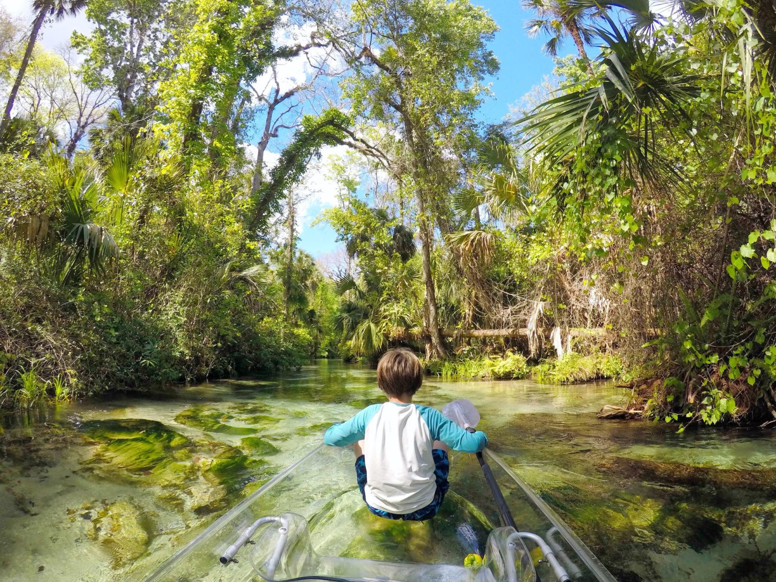 Central Florida kayaking adventures