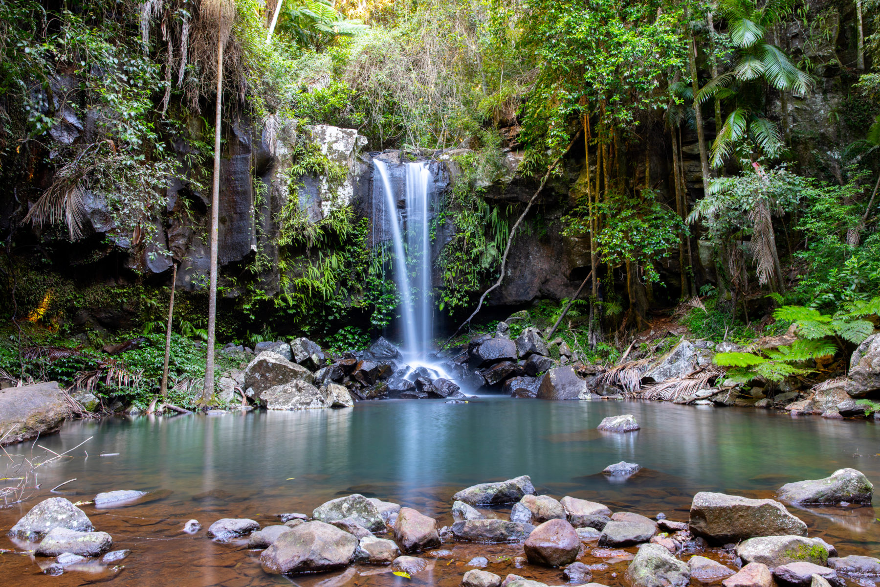 Waterfall in Tamborine National Park