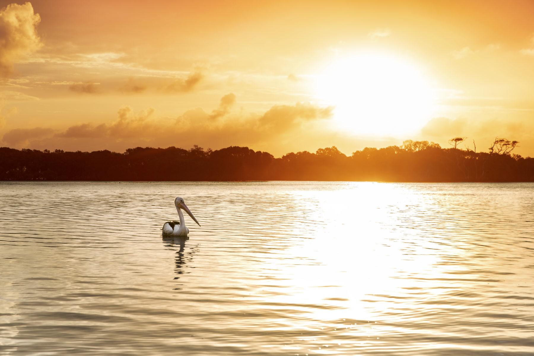 South Stradbroke Island, Australia