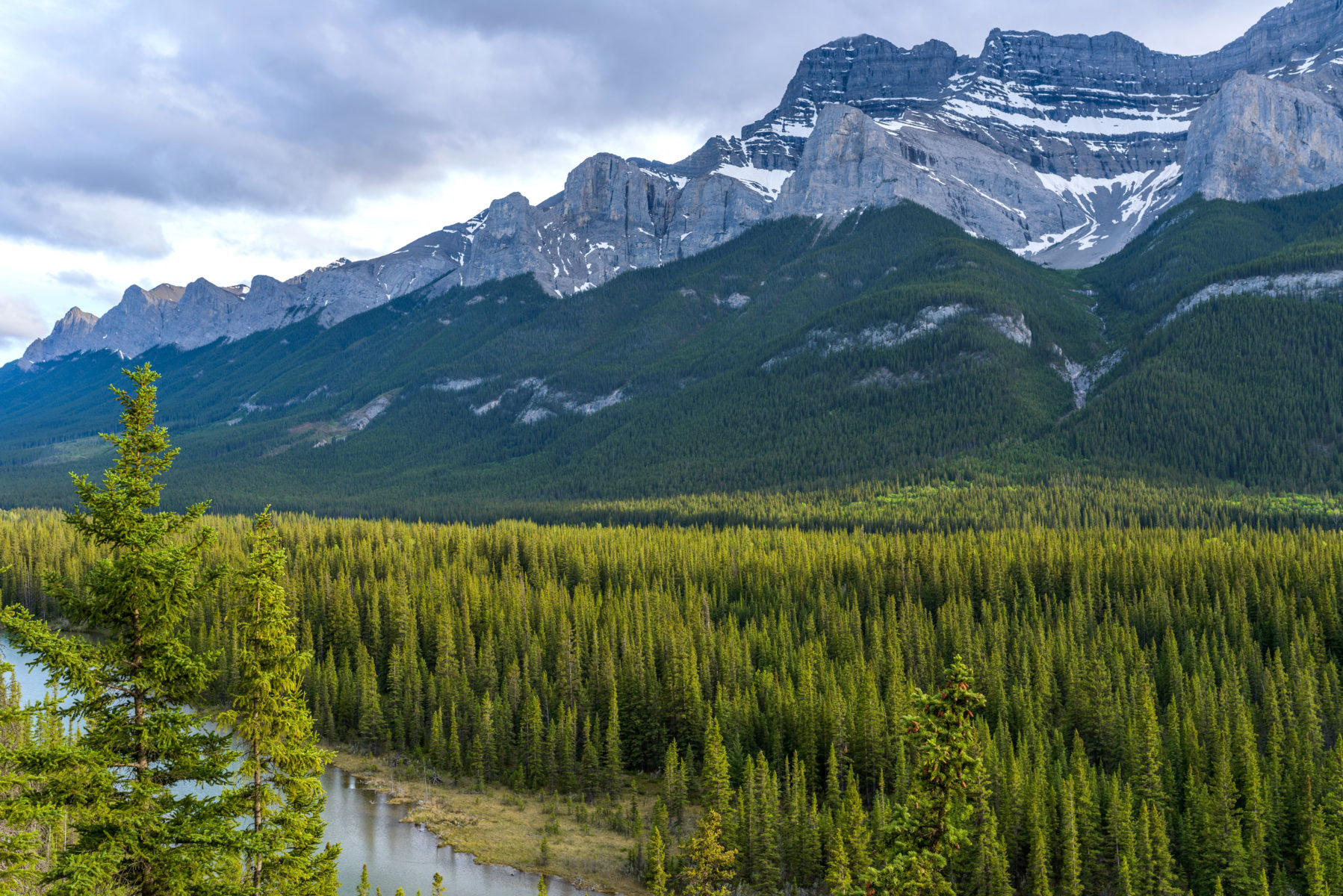 Beautiful views on the Banff Legacy Trail