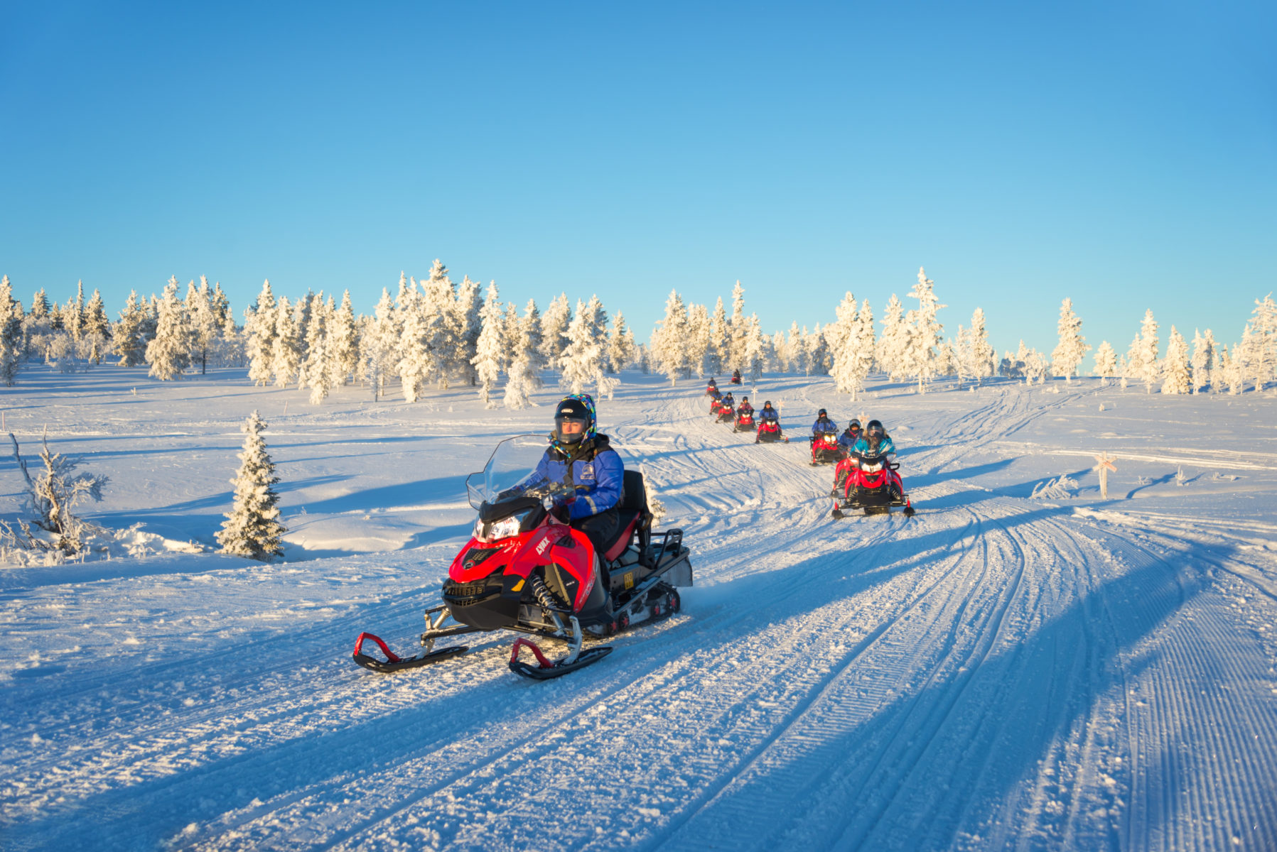 Group snowmobile tour