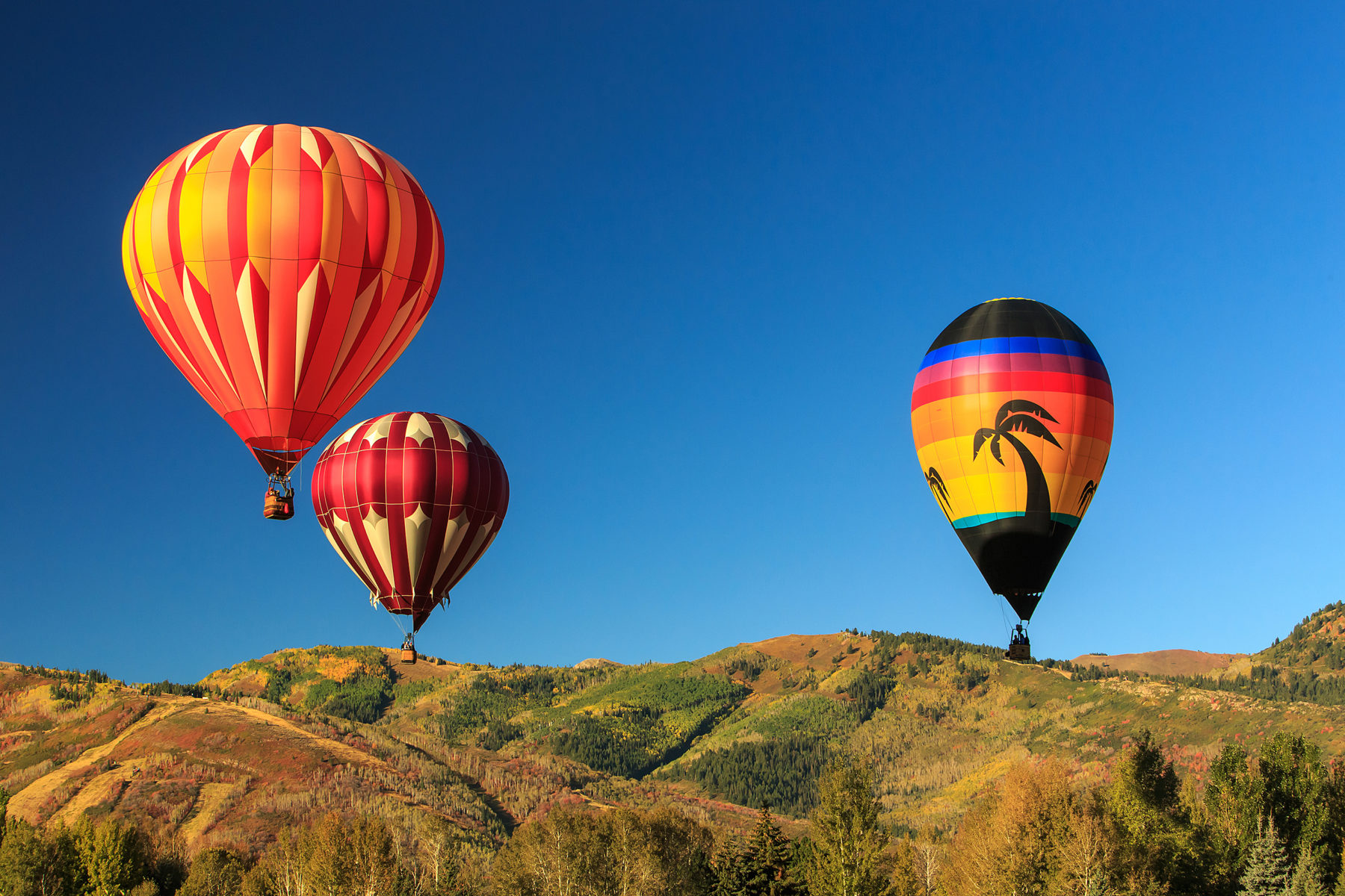 Hot air balloons above Park City, Utah