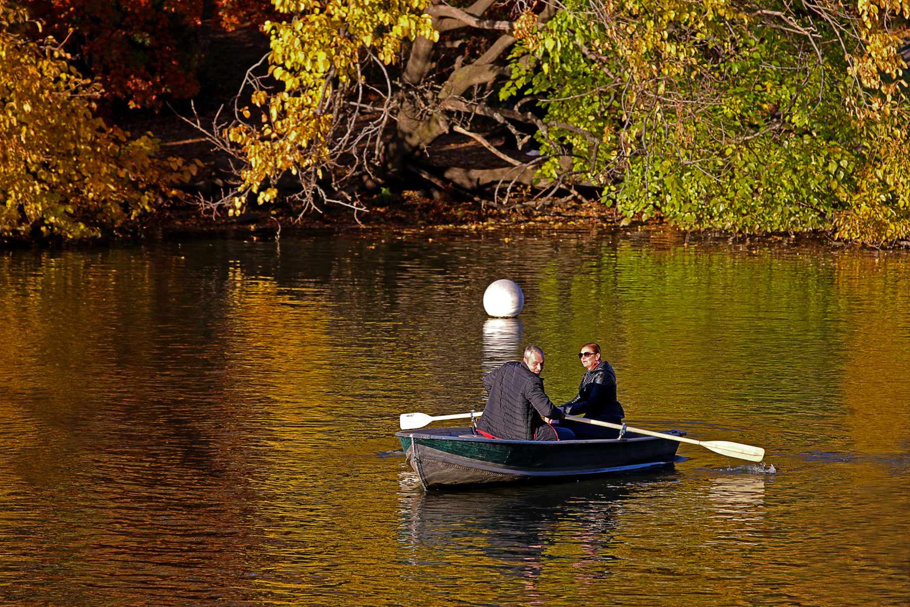 A romantic rowboat ride in Central Park